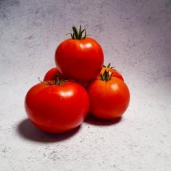 1Kg Tomate ronde BIO