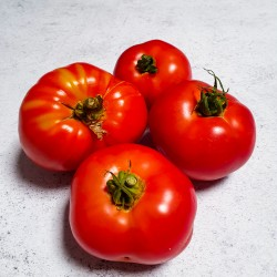 1Kg Tomate Ancienne BIO