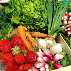 Panier de fruits et légumes à 18€