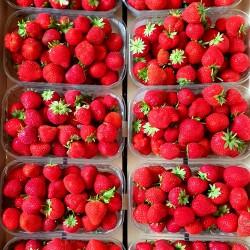 500g de fraises